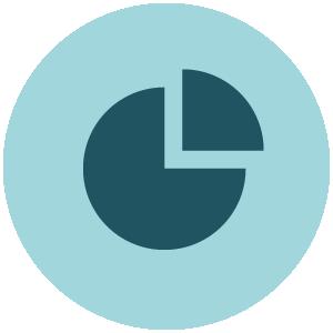 statistics Achieve Icon