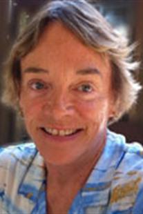 Judy Stamm
