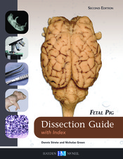 Fetal Pig Dissection Guide with Index