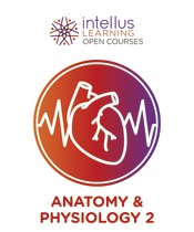 Intellus Open Course for Anatomy and Physiology - 2nd Semester (Six Months Access)