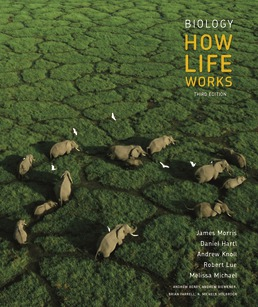 Biology: How Life Works by James Morris; Daniel Hartl; Andrew Knoll; Robert Lue; Melissa Michael; Andrew Berry; Andrew Biewener; Brian Farrell; N. Michele Holbrook; Jean Heitz; Mark Hens; John Merrill; Randall Phillis; Debra Pires; Elena Lozovsky - Third Edition, 2019 from Macmillan Student Store