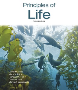 Principles of Life by David M. Hillis; Mary V. Price; Richard W. Hill; David W. Hall; Marta J. Laskowski - Third Edition, 2019 from Macmillan Student Store