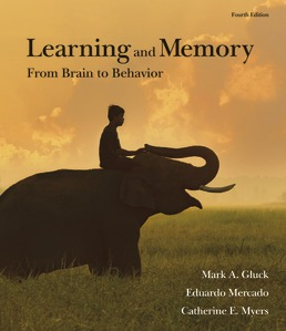 Learning and Memory by Mark A. Gluck; Eduardo Mercado; Catherine E. Myers - Fourth Edition, 2020 from Macmillan Student Store