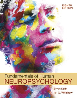 Fundamentals of Human Neuropsychology by Bryan Kolb; Ian Whishaw - Eighth Edition, 2021 from Macmillan Student Store