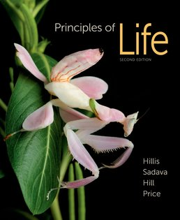 Principles of Life by David M. Hillis; David Sadava; Richard W. Hill; Mary V. Price - Second Edition, 2014 from Macmillan Student Store