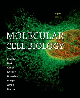Molecular Cell Biology by Harvey Lodish; Arnold Berk; Chris A. Kaiser; Monty Krieger; Anthony Bretscher; Hidde Ploegh; Angelika Amon; Kelsey C. Martin - Eighth Edition, 2016 from Macmillan Student Store