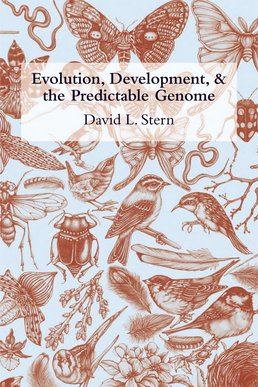 Evolution, Development, and the Predictable Genome by David L. Stern - First Edition, 2011 from Macmillan Student Store