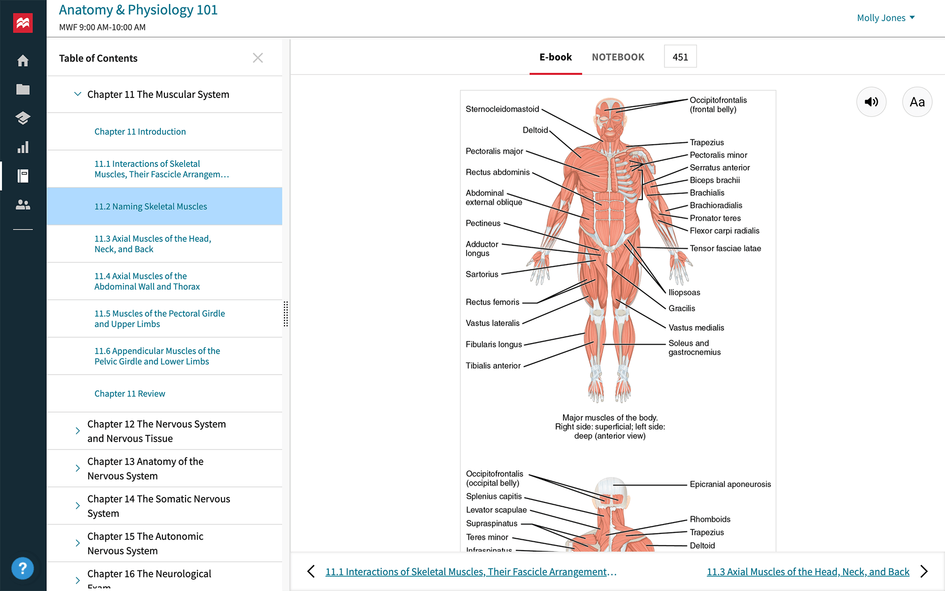 achieve anatomy and physiology